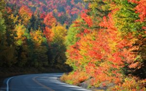 2019 White Mountains Fall Foliage is the Best in New Hampshire
