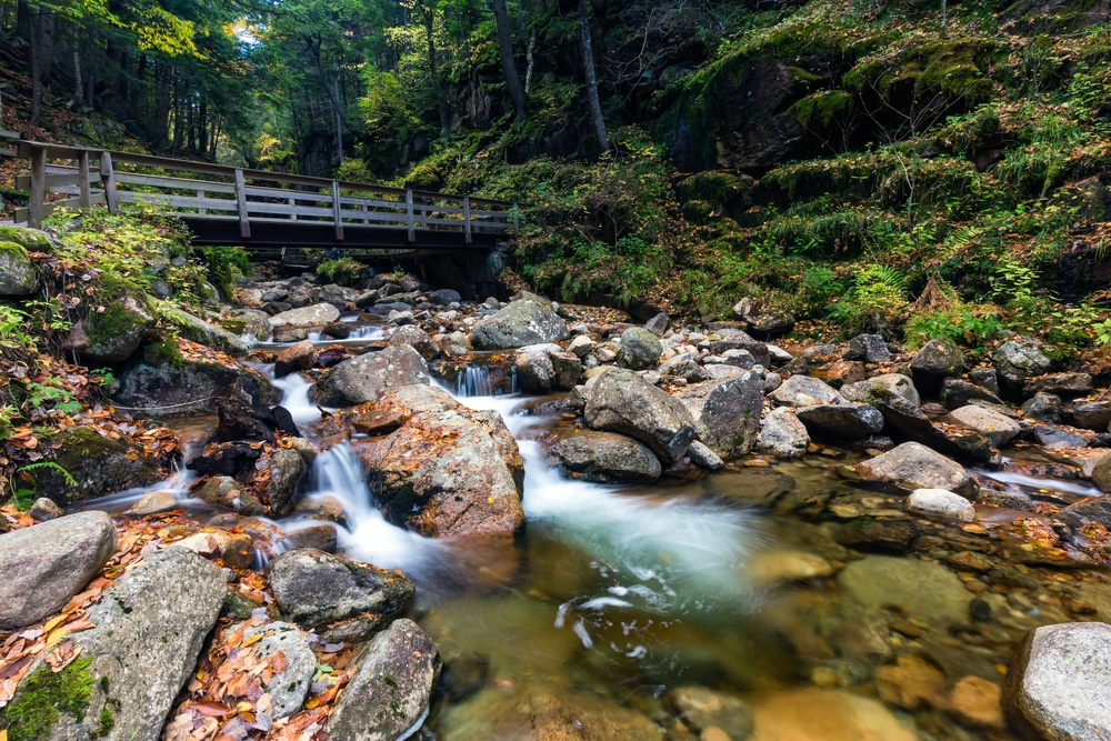 The Cannon Mountain Aerial Tramway isn't the only thing worth seeing in Franconia Notch, home to this beautiful icon, the Flume Gorge